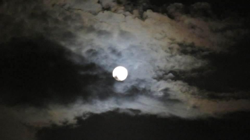 Notte di luna a Nairobi, Kenia