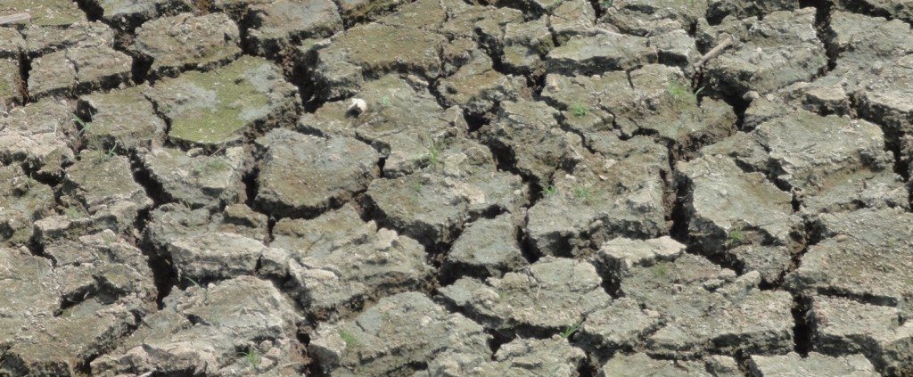 Crisi idrica: apolicalisse in Africa